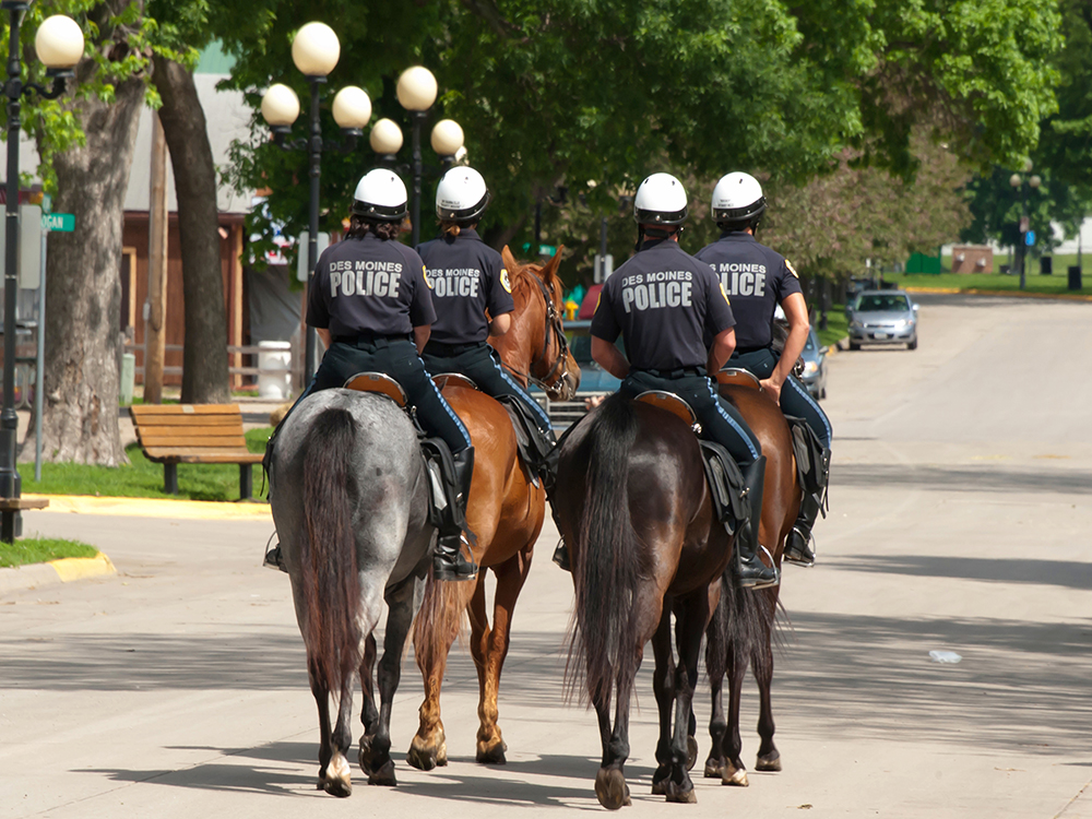 Trinidad Mounted Police Poster Police Life